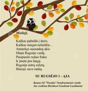 hibou-sur-un-branchement-d-automne-26765930